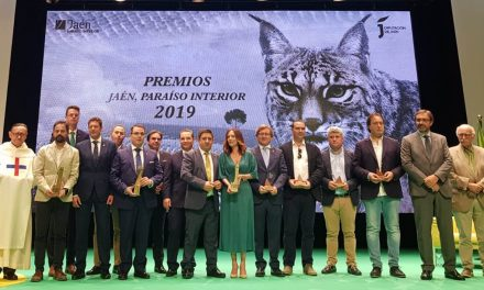Ceremonia de entrega de los Premios JPI 2019