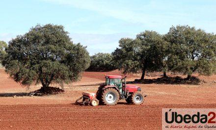 ASAJA-JAÉN SOLICITA QUE SE PRIORICE A LOS AGRICULTORES Y GANADEROS EN LA VACUNACIÓN FRENTE AL COVID-19