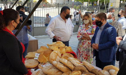 La Diputación apoya la industria del pan jiennense celebrando una muestra en la lonja del Palacio Provincial
